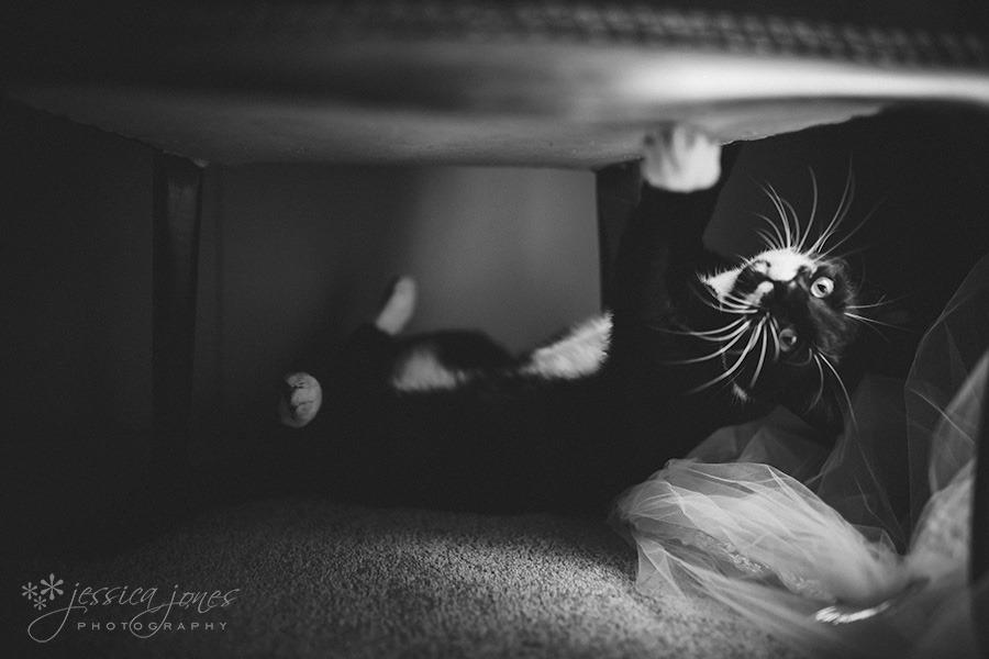 Gemma_Shane_Wedding-006