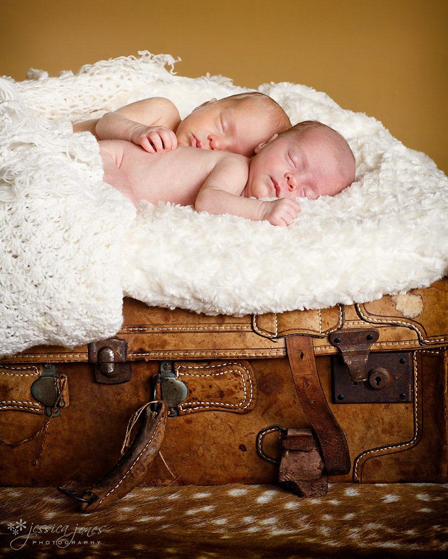 newborn_twins_portrait2