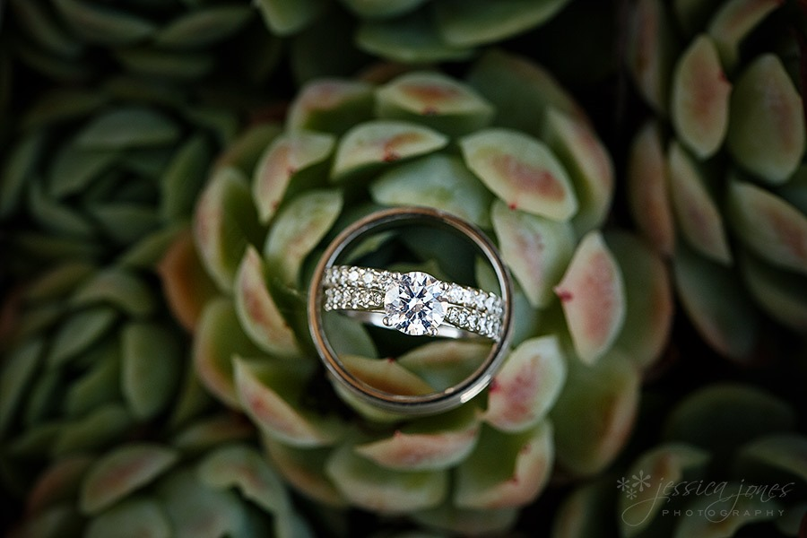 Jane_Matt_Blenheim_Wedding_47