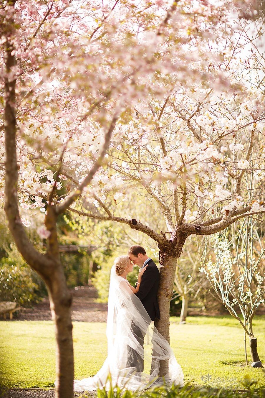 Susan_Rupert_Blenheim_Wedding_42