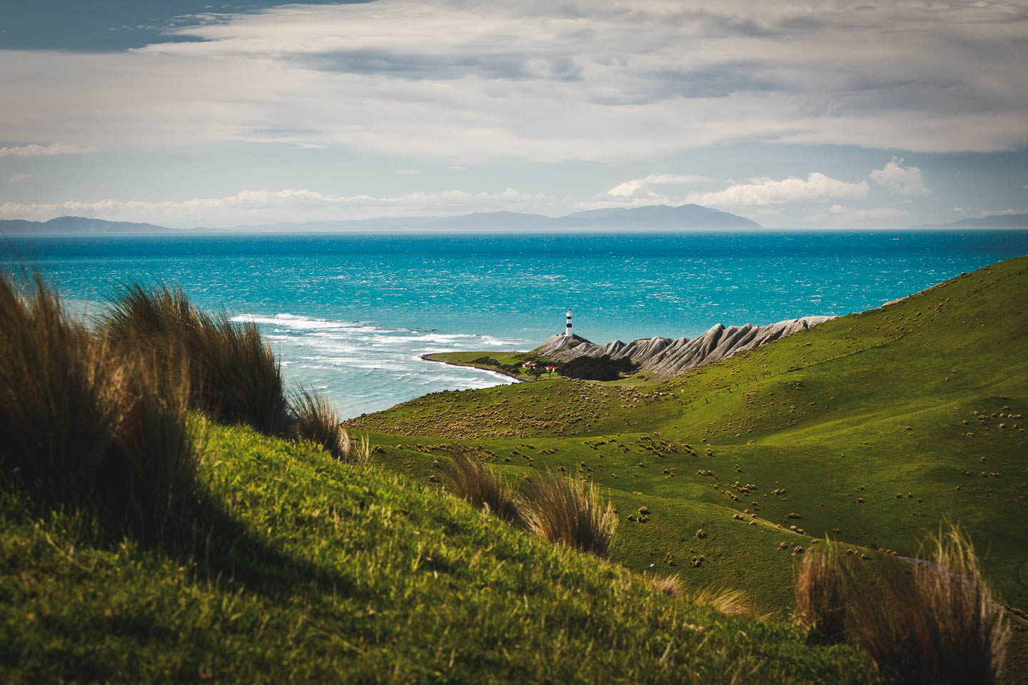 Marlborough Scenic Photography - Cape Campbell