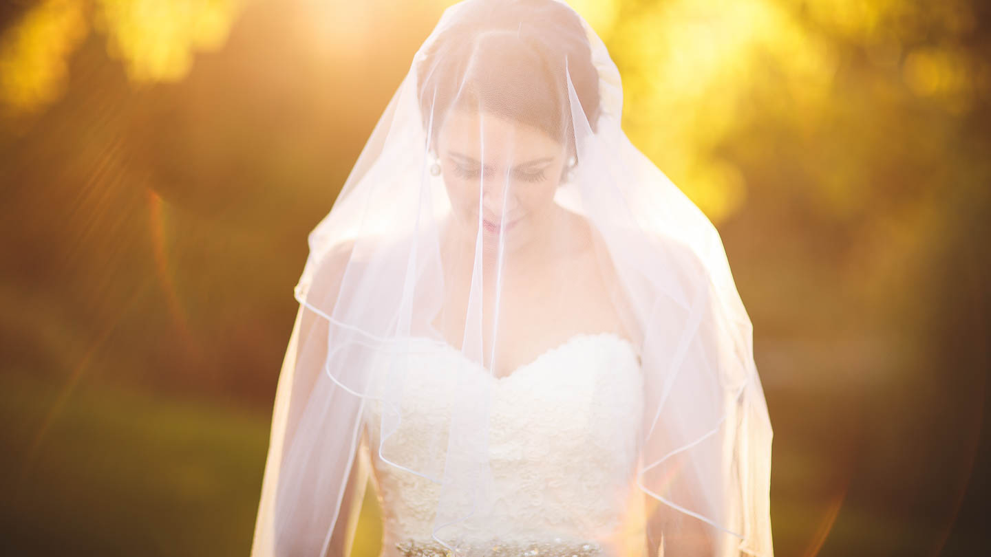 Marlborough Bride