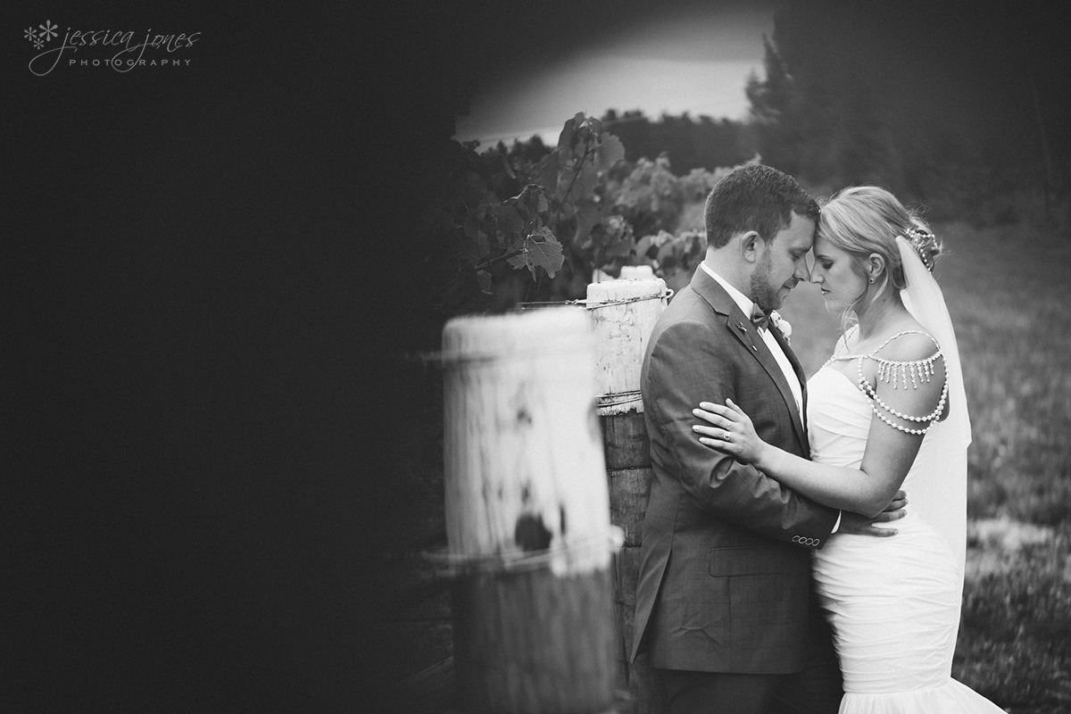 Marlborough_Vineyard_Wedding-079