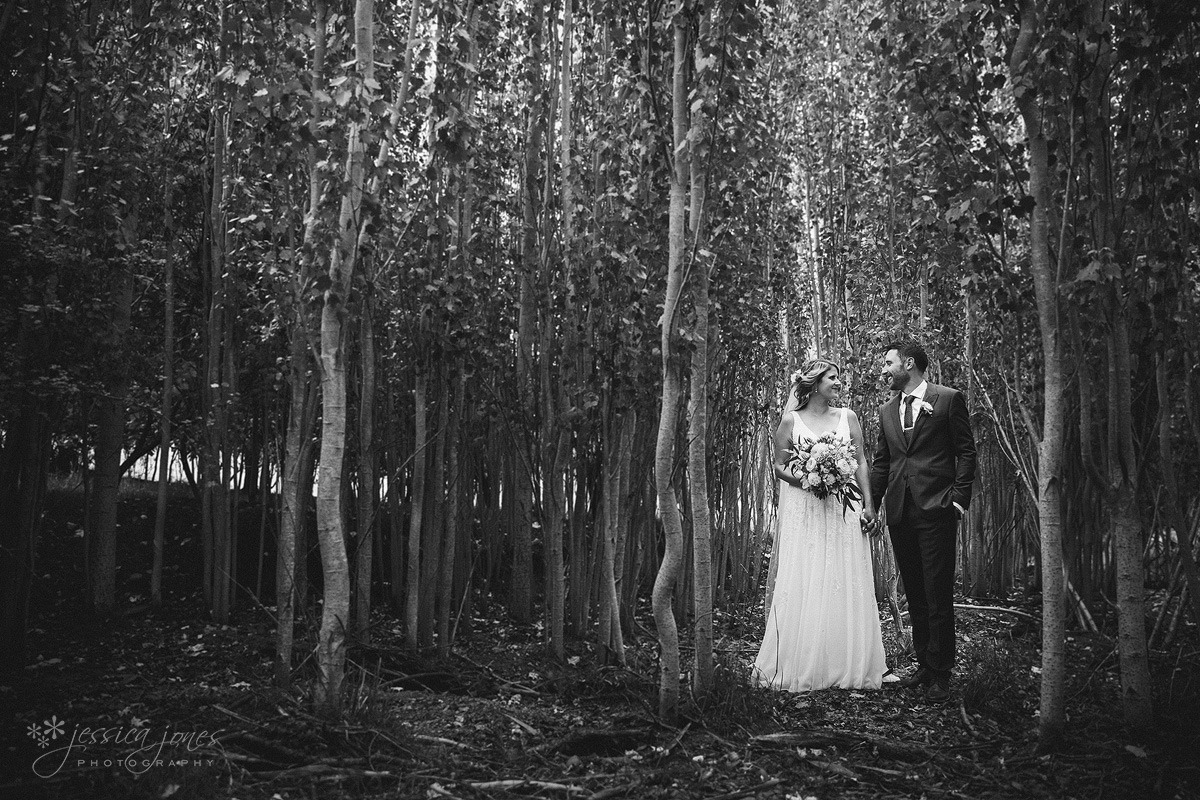Marlborough_Wither_Hills_Wedding-001