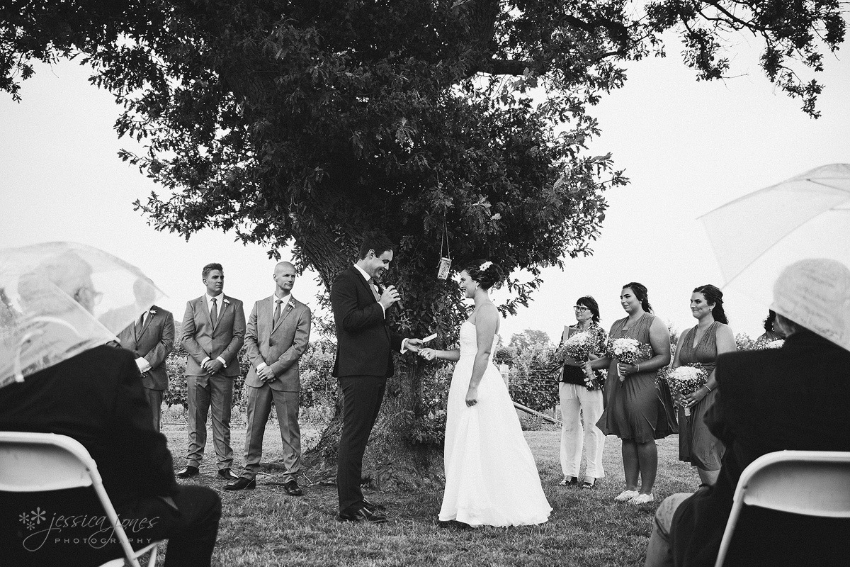 Old_Barn_Wedding_Blenheim-022