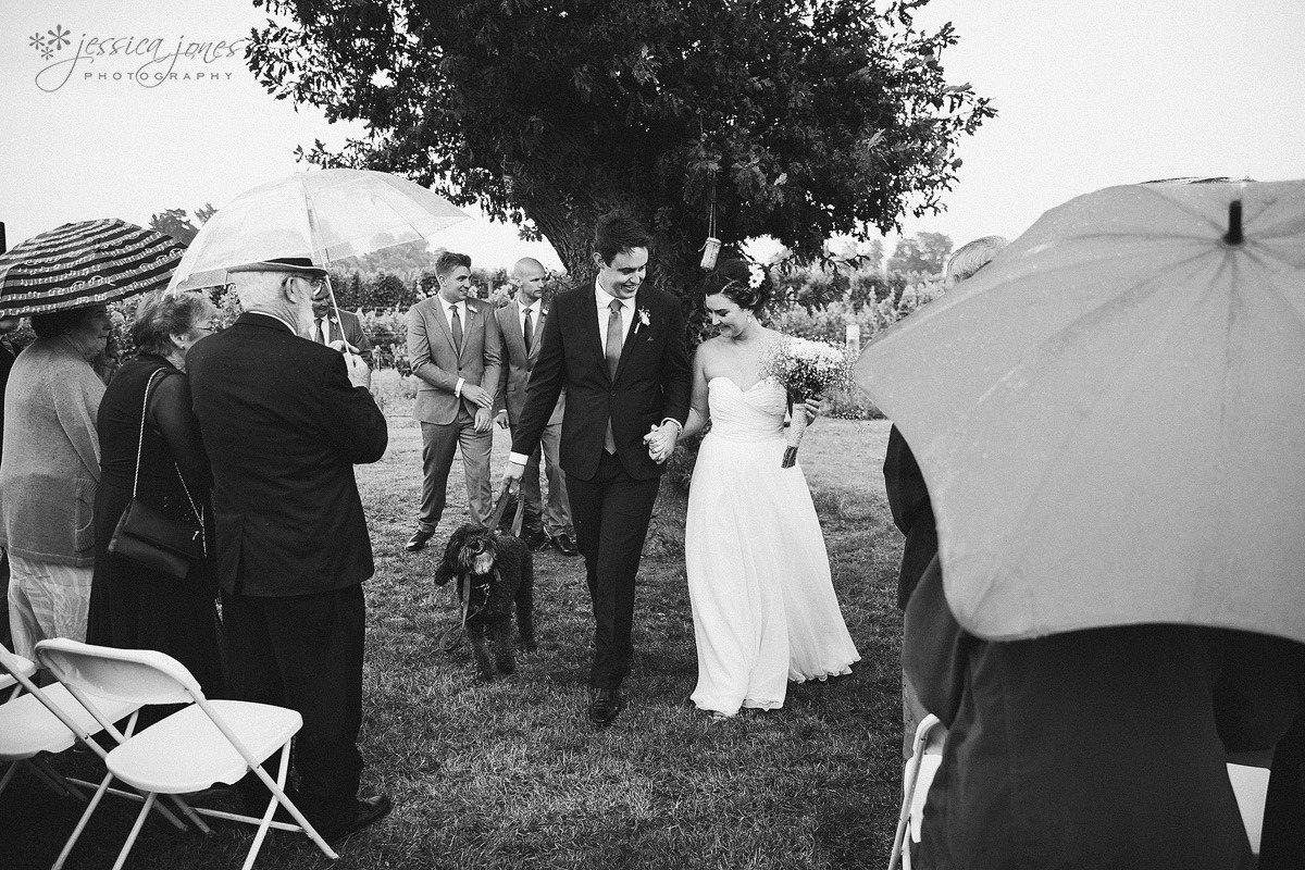 Old_Barn_Wedding_Blenheim-030